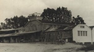 יוניגל החל מ1934